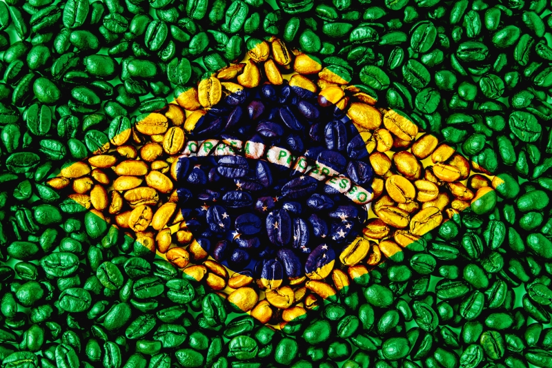 Brazylia_flaga_z_ziaren_800